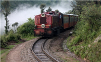 The Darjeeling Himalayan Railway (Toy Train)