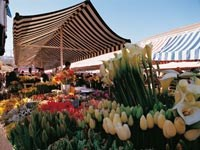 Cours Saleya Food and Flower Market