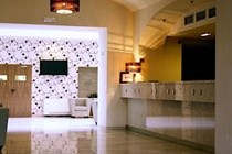 Design Hotel Elephant (Minimum 3 Nights)
