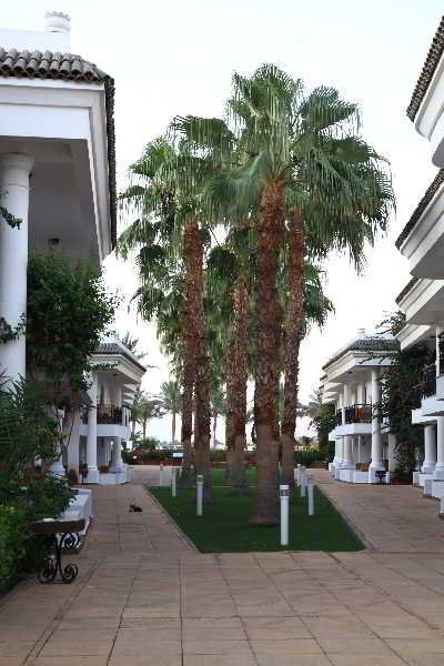 Dessole Seti Sharm Palm Beach Resor